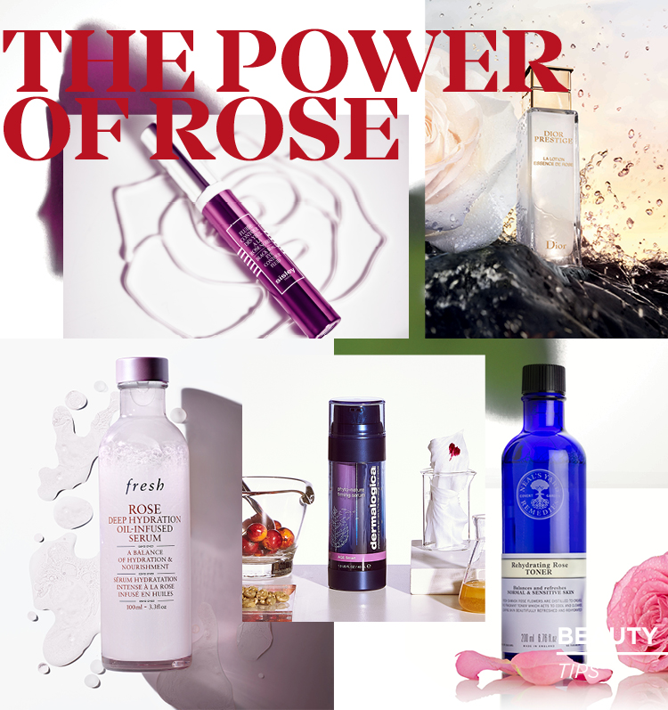 THE POWER OF ROSE