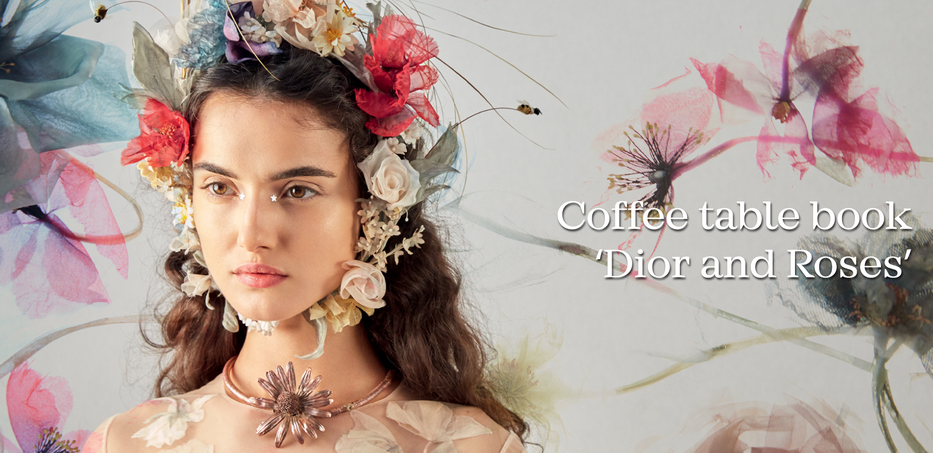 Coffee table book : Dior and Roses